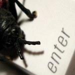Atak niezwykłego robaka