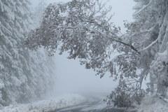 Atak zimy na Podhalu