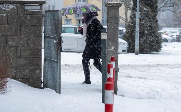 Atak zimy w Katowicach / Andrzej Grygiel    /PAP