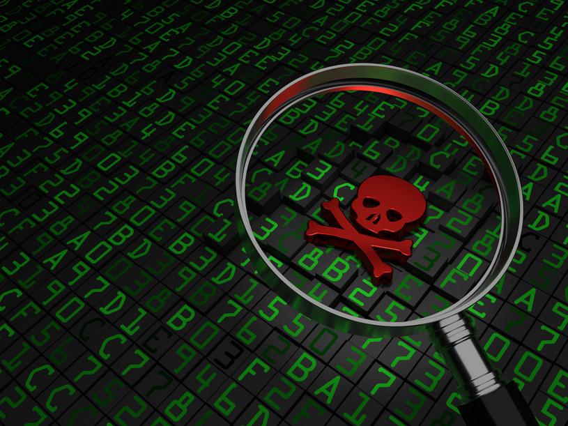Ataki hakerskie dla okupu zyskują na popularności /123RF/PICSEL