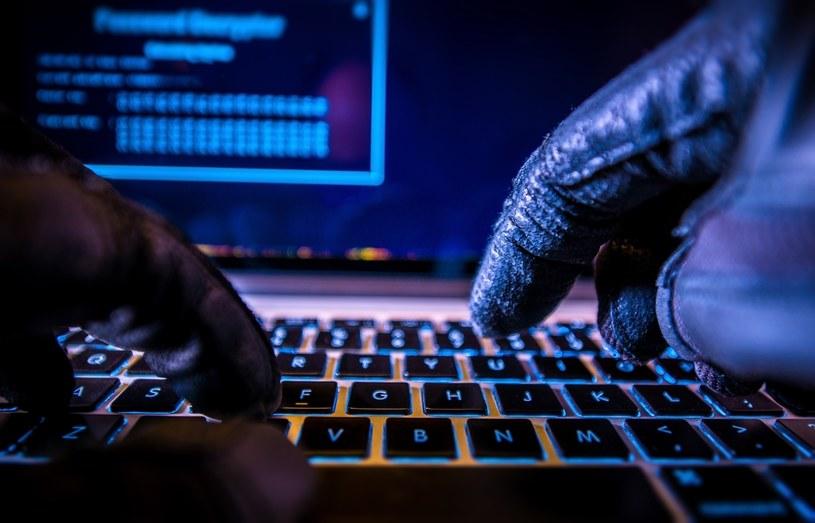 Ataki hakerskie to coraz większy problem użytkowników internetu /123RF/PICSEL