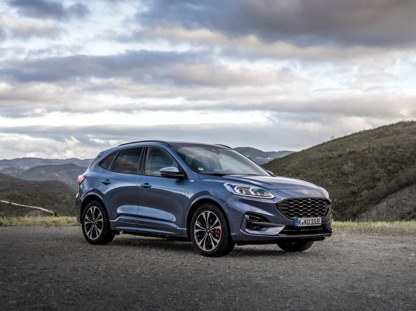 Atrakcyjny wygląd i praktycznie rozwiązania - w tym tkwi siła nowego SUV-a Forda /materiały prasowe