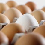 Auchan wycofuje ze sprzedaży jaja z chowu klatkowego