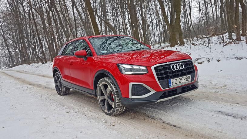 Audi Q2 35 TFSI /INTERIA.PL