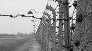 Auschwitz - historia