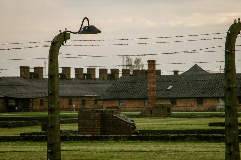 Auschwitz, zdjęcie ilustracyjne /123RF/PICSEL
