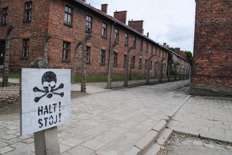 Auschwitz /EKM /INTERIA.PL