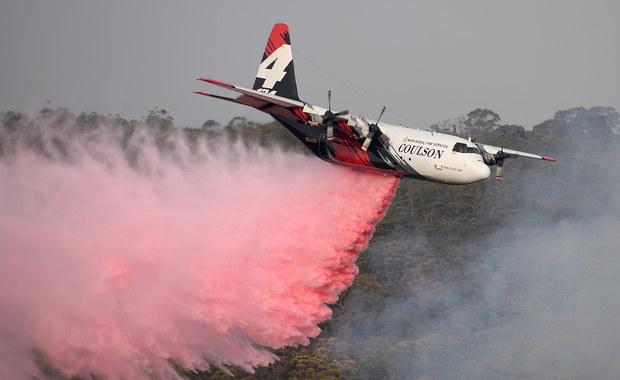 Australia płonie: Lewica apeluje o wysłanie polskich strażaków