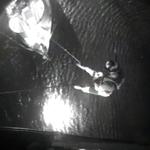 Australia. Rekin odgryzł rękę surferowi. Mężczyzna nie przeżył