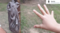 Australia: Sfotografowała ćmę większą od jej własnej ręki!