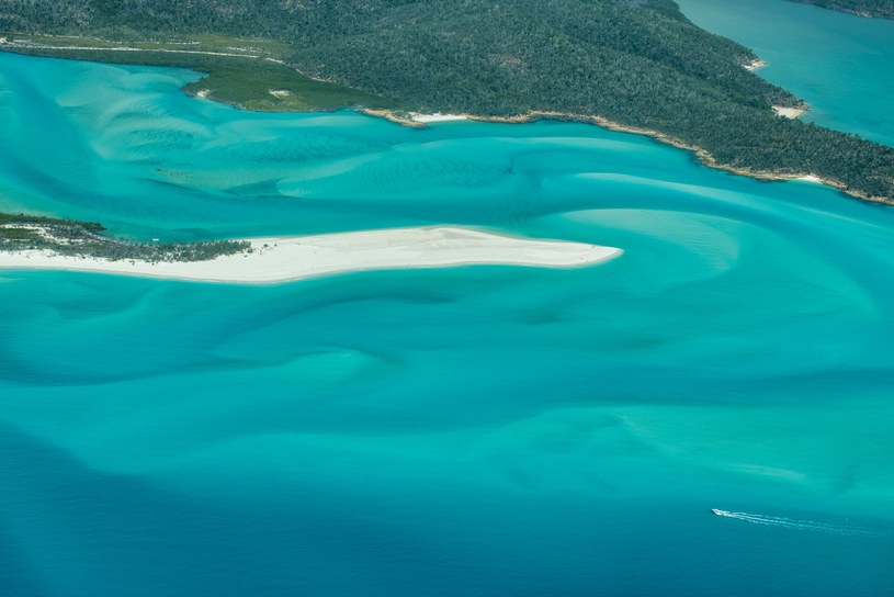 Australijska Whitehaven Beach została wybrana najpiękniejszą plażą świata /123RF/PICSEL