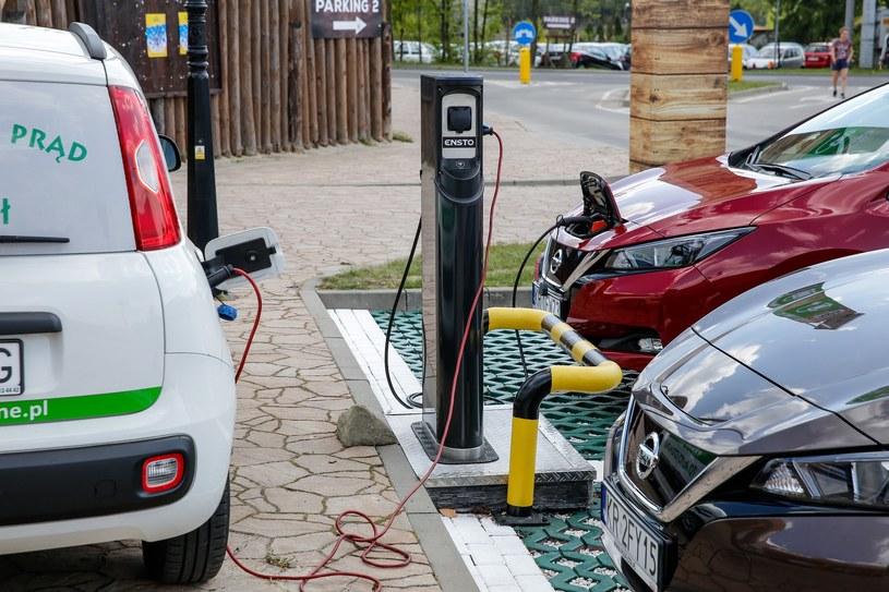 Auta elektryczne kupują głównie firmy. Ale spalinowe - również /Tomasz Kawka /East News