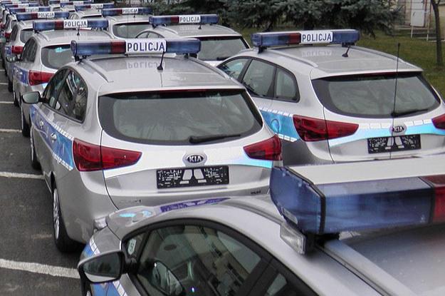 Auta napędzane są 1,6-litrowym turbodieslem (128 KM). /Policja