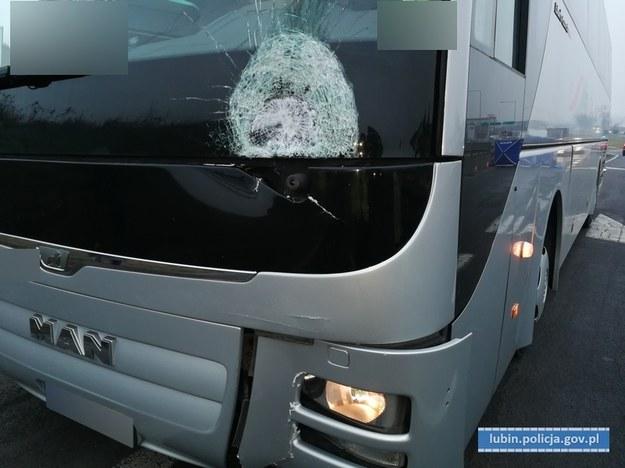 Autobus, który potrącił 19-latka /Policja