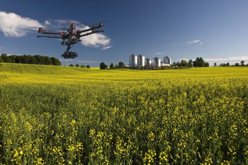 Autonomiczne drony mogą wkrótce patrolować japońskie uprawy /123RF/PICSEL