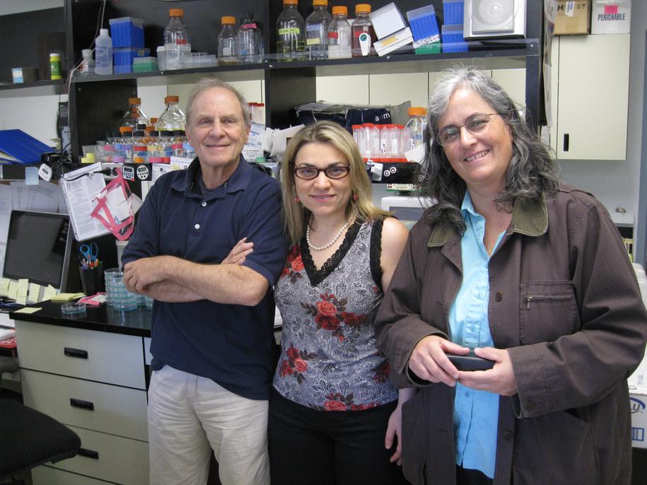 Autorzy odkrycia: Jerry Kaplan, Ivana De Domenico i Diane Ward  /Fot. Curry Koening, University of Utah