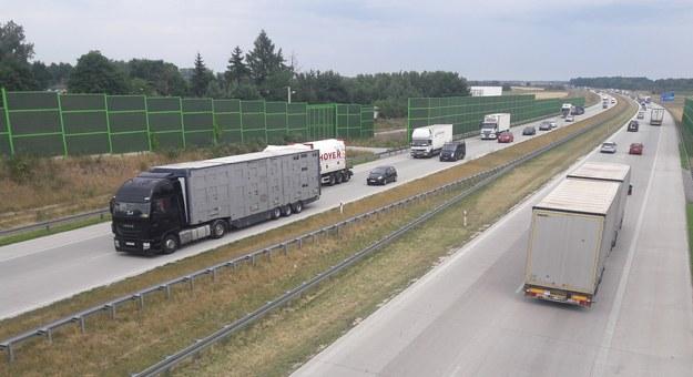 Autostrada A1, zdj. ilustracyjne /ANDRZEJ ZBRANIECKI /East News