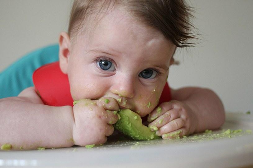 avocado dla dzieci /© Photogenica