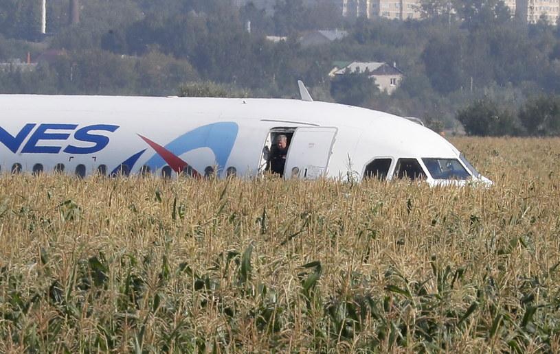 Awaryjne lądowanie w polu kukurydzy /Sergei Ilnitsky /PAP/EPA