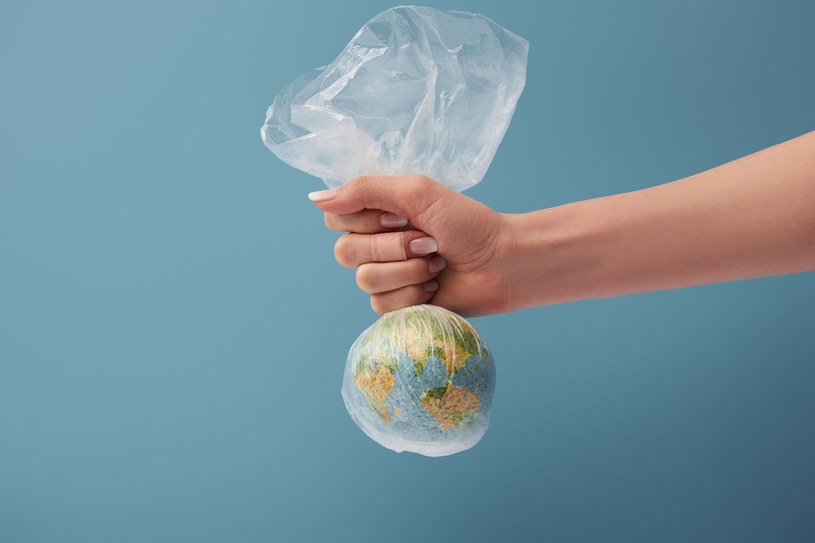 Aż 1/3 całej wyprodukowanej na świecie idealnie świeżej i pysznej żywności nigdy nie trafia na nasze stoły /123RF/PICSEL