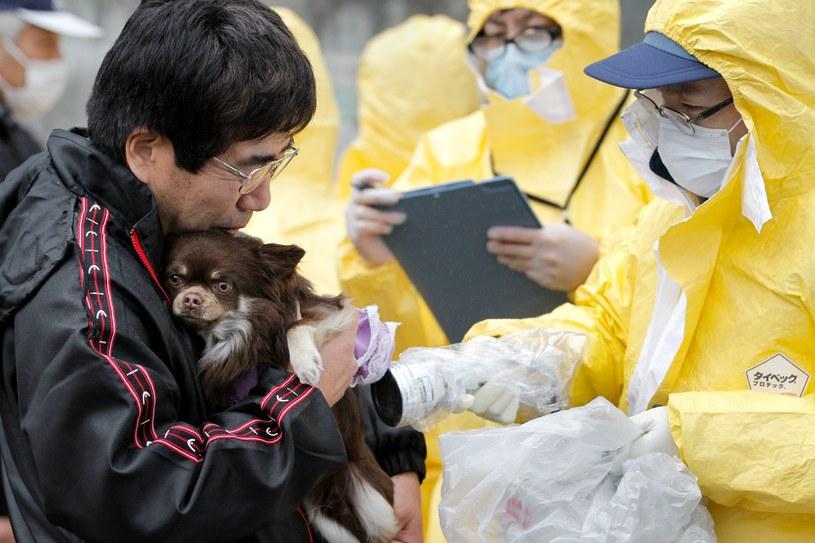 Azjaci jedli  psie mięso przy okazji ważnych uroczystości takich jak stypa czy zaślubiny. Teraz te zwyczaje zanikają /Getty Images