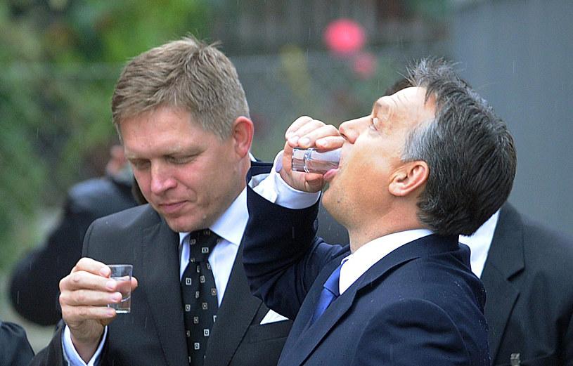 B. premier Słowacji Robert Fico (L) i premeir Węgier Viktor Orban (P) pijący palinkę w Pilisszentkereszt na Węgrzech /AFP