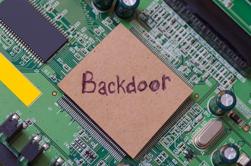 Backdoory stanowią niezwykle niebezpieczny rodzaj szkodliwego oprogramowania /123RF/PICSEL