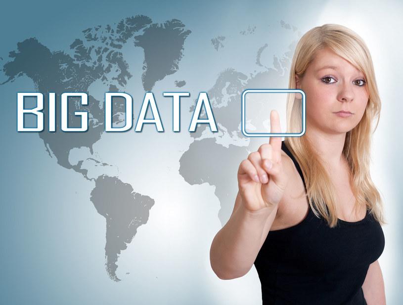 Badacz danych (big data scientist) będzie jednym z najbardziej pożądanych zawodów tej dekady /123RF/PICSEL