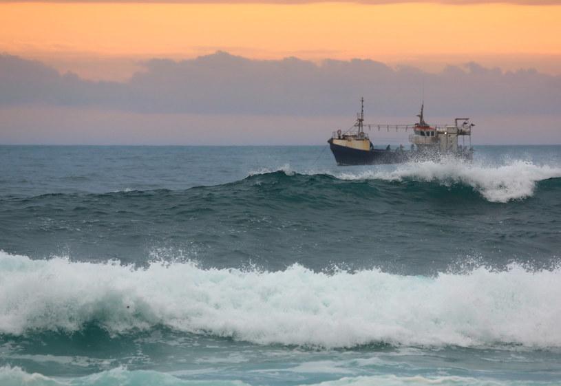 Badacze twierdzą, że kraken, atakując statki, broni swojego terytorium /123RF/PICSEL
