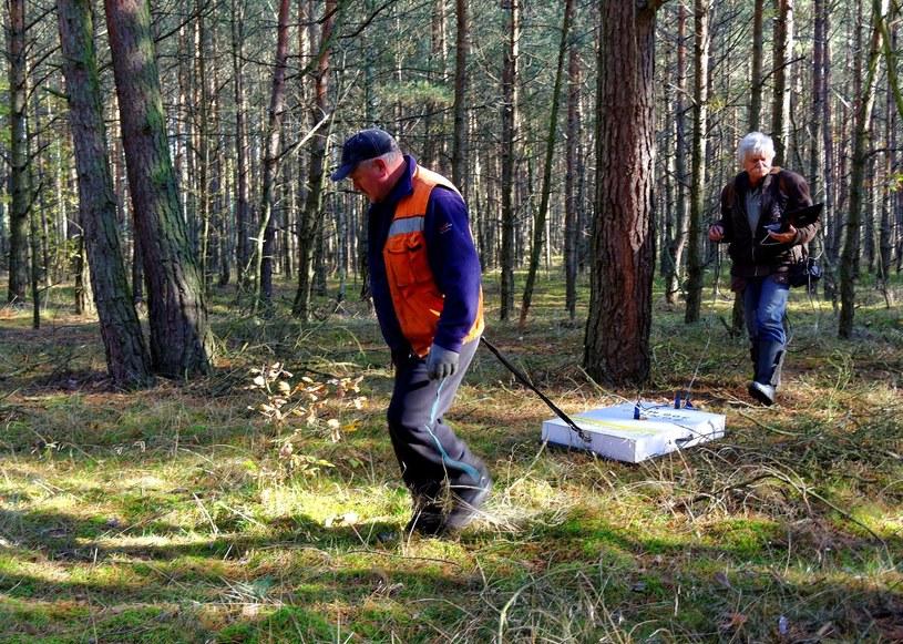 Badania georadarowe w rejonie wskazanym na podstawie analizy laserowego skaningu. /Odkrywca