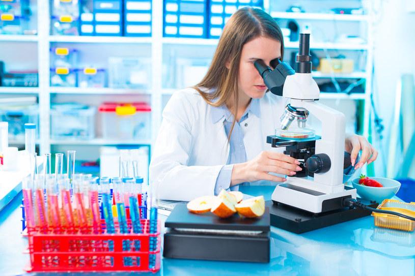 Badania laboratoryjne /©123RF/PICSEL