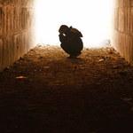 Badania: Przez trzy dekady spadała liczba samobójstw. Zmieniła to pandemia