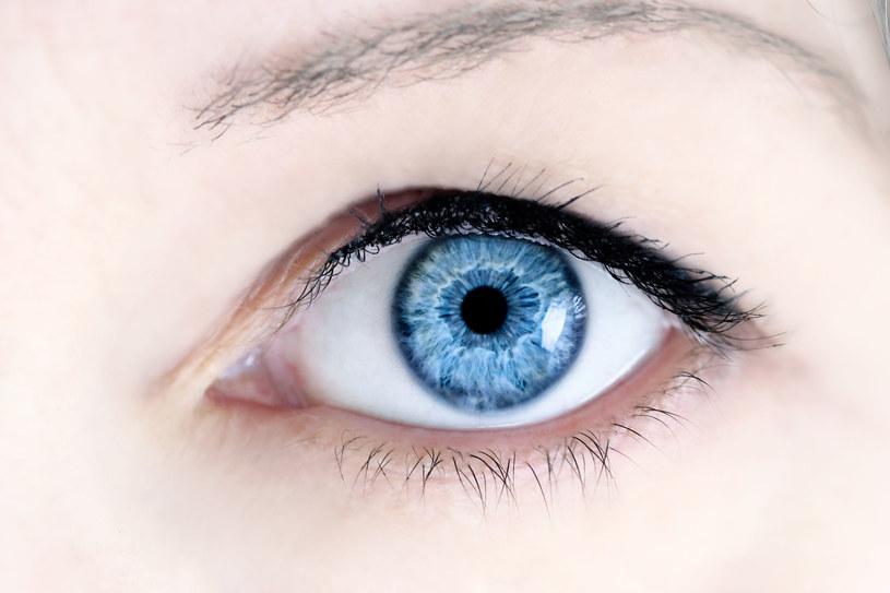 Badanie dna oka może pomóc w diagnostyce choroby Parkinsona /123RF/PICSEL