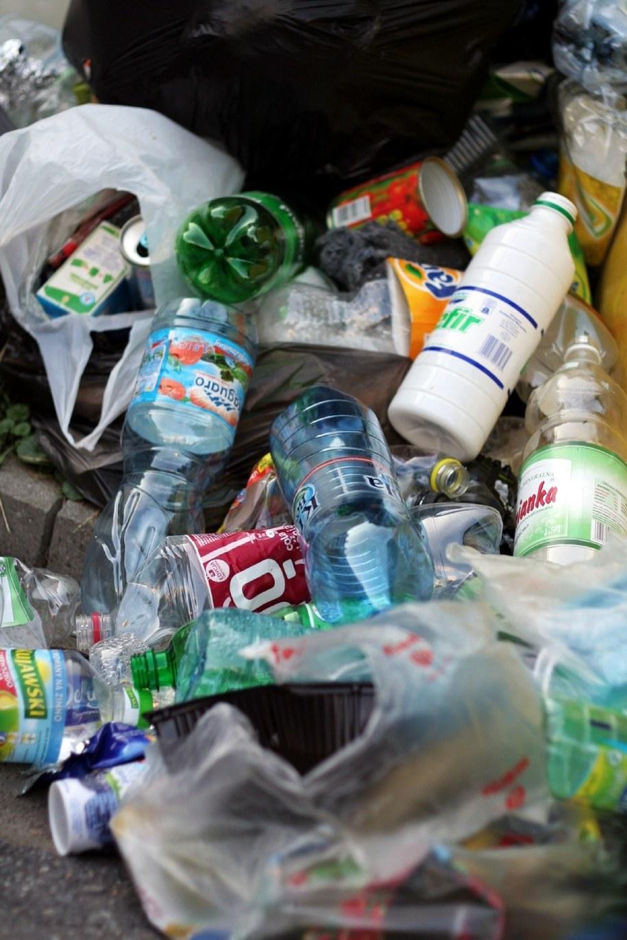 Badanie jednoznacznie pokazuje krytyczny stosunek mieszkańców śląskiego do śmieciowej reformy /Maciej Nycz /Archiwum RMF FM