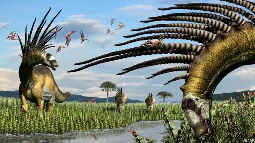 Bajadasaurus pronuspinax /materiały prasowe
