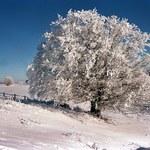 Bajkowa kraina? Nie, to Polska zimą!