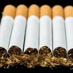 Bakteria pożerająca nikotynę nadzieją dla palaczy