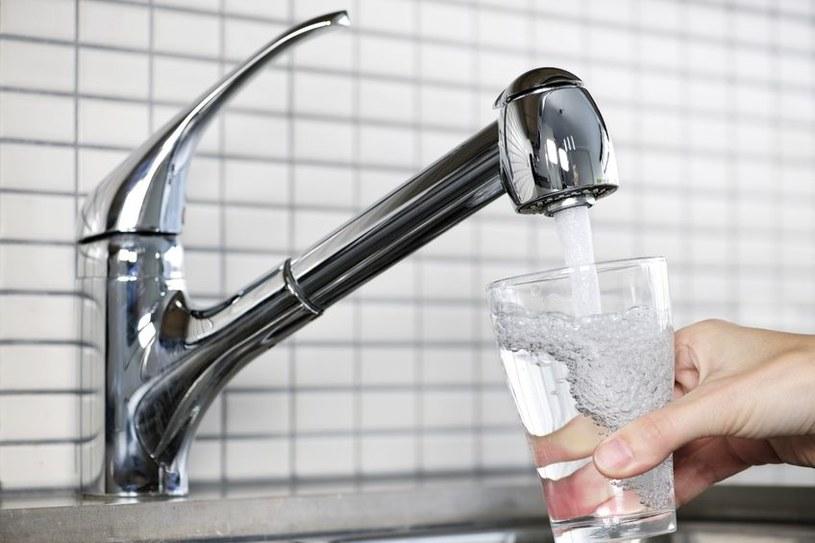 Bakterie obecne w rurach i instalacjach wodnych oczyszczają wodę /123RF/PICSEL