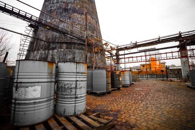 Bakterie rozłożą dla nas odpady radioaktywne? /123RF/PICSEL