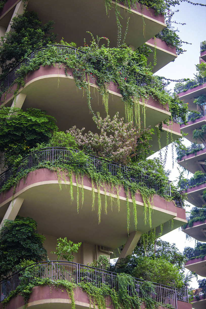 Balkony niektórych mieszkań zaczęły już żyć własnym życiem /ICHPL Imaginechina /East News