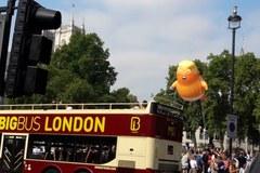 Balon-karykatura Trumpa zawisł nad brytyjskim parlamentem