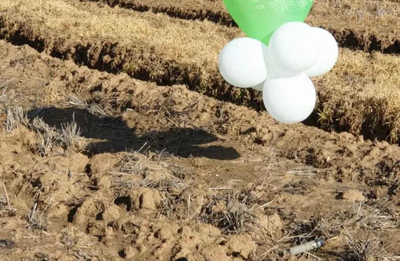 Balony z materiałem wybuchowym, które wylądowały w okolicy Shaar HaNegev /Izraelska Policja /