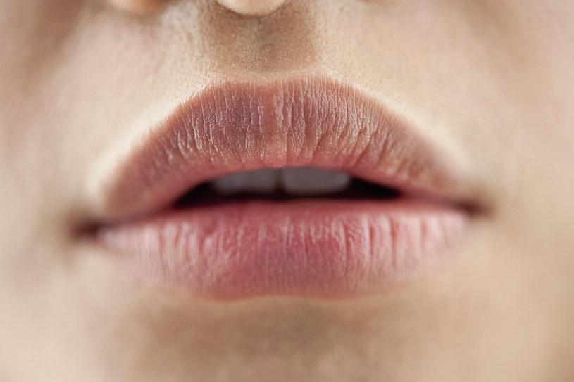 balsam do ust /© Photogenica