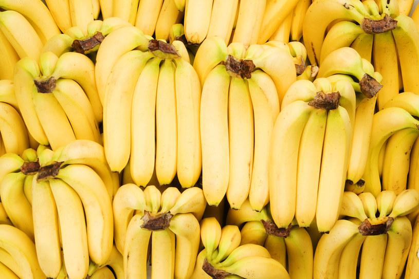banan ukąszenia owadów /© Photogenica