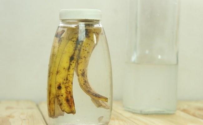 banany nawóz /© Photogenica