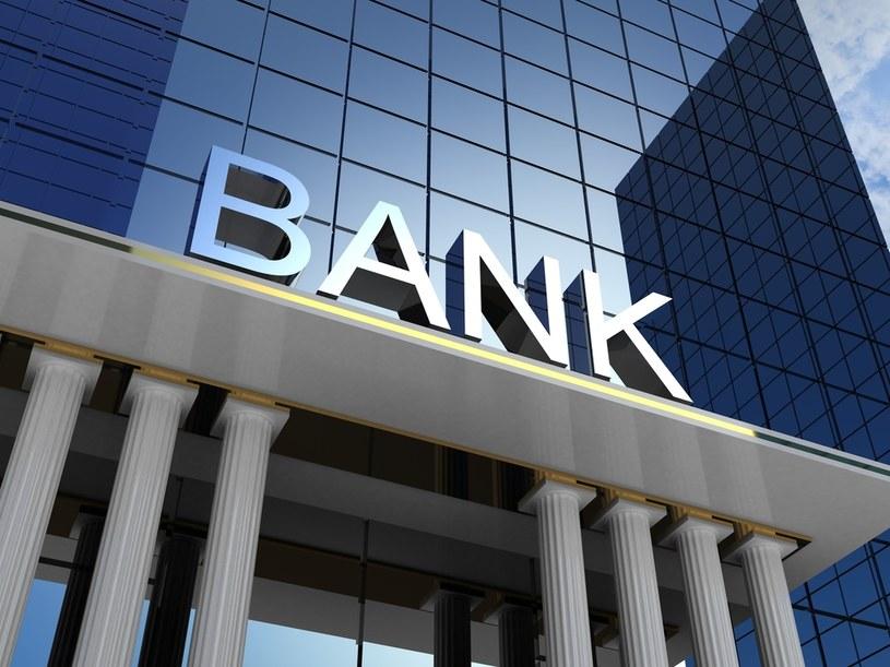 Bank oszacował, że wpływ przewalutowania kredytów frankowych, według propozycji KNF, kosztowałby około 6,1-6,7 mld zł /123RF/PICSEL