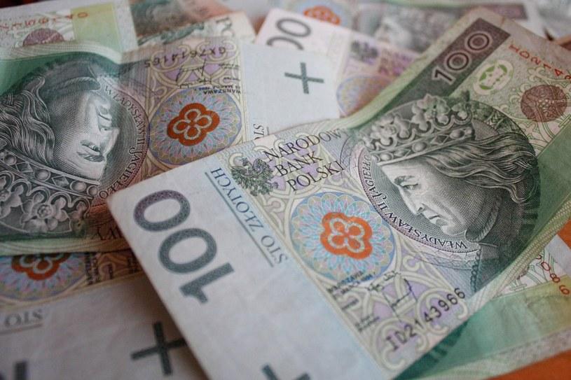 Banknoty 100 zł /Kamil Krukiewicz /Reporter