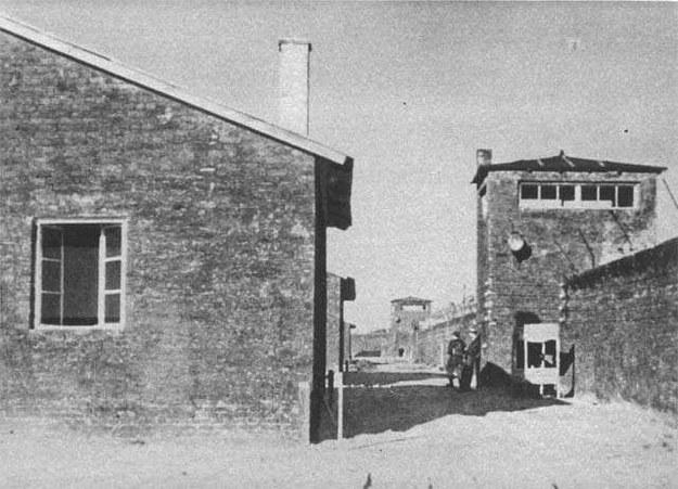 """Baraki i wieże strażnicze KL Warschau. Zdjęcie wykonane po zdobyciu obozu przez żołnierzy batalionu """"Zośka"""" /Wikimedia"""