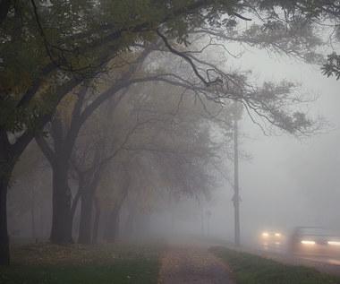 Bardzo zła jakość powietrza. Normy przekroczone nawet o 700 proc.