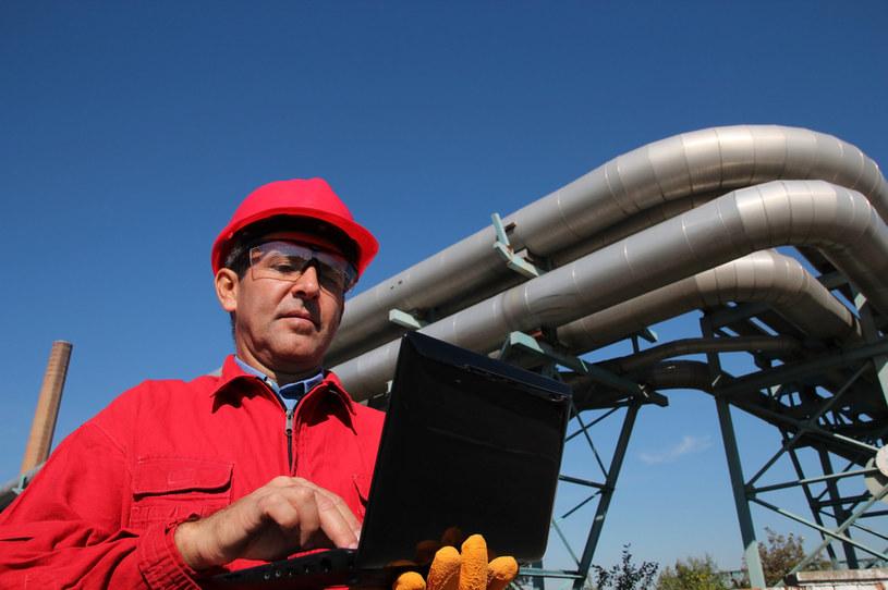 Bariery podażowe w Niemczech ograniczą skalę ożywienia w polskim przemyśle /123RF/PICSEL